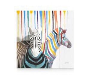cma sch zebra couple