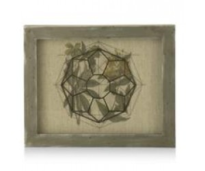 cma dec geometric leafs