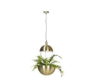 Suspension luminaire or chaine plante
