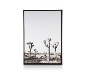 Affiche encadrée désert noir et blanc