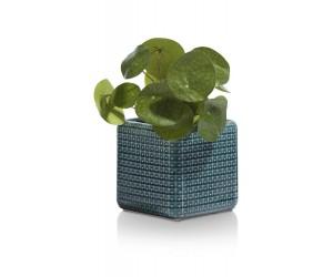 Pot de fleurs bleu pétrole