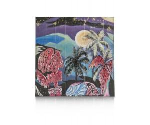 Peinture multicolore nuit étoilée à Hawaï