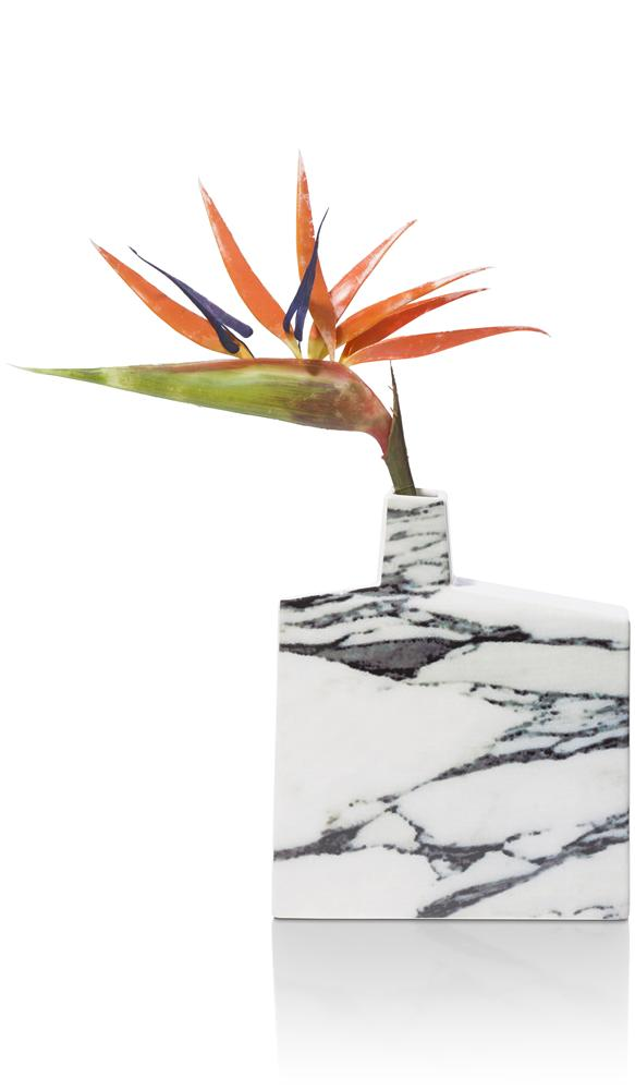 CMA GEE yellow marble front bloem