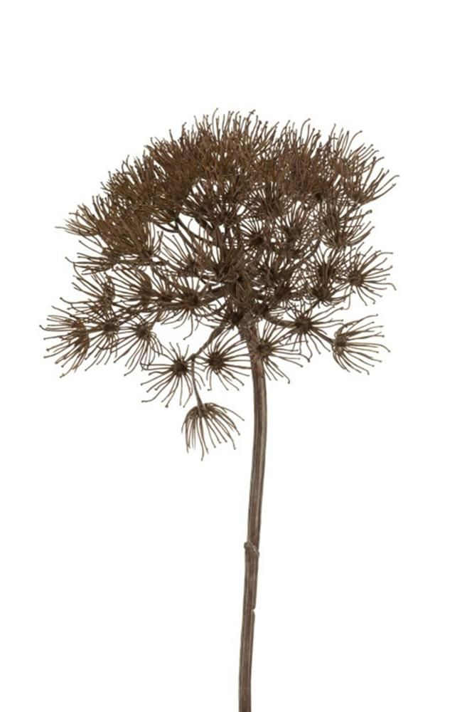 YOU GRY Heracleum branche grey cm