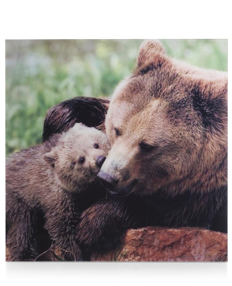 cma sch mother love