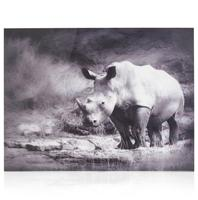 cma sch rhino