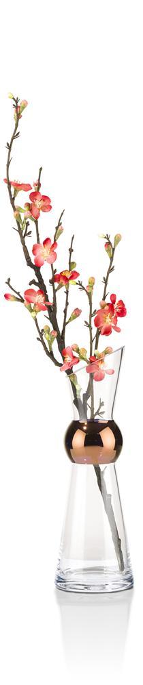 cma kop noemi h front bloem