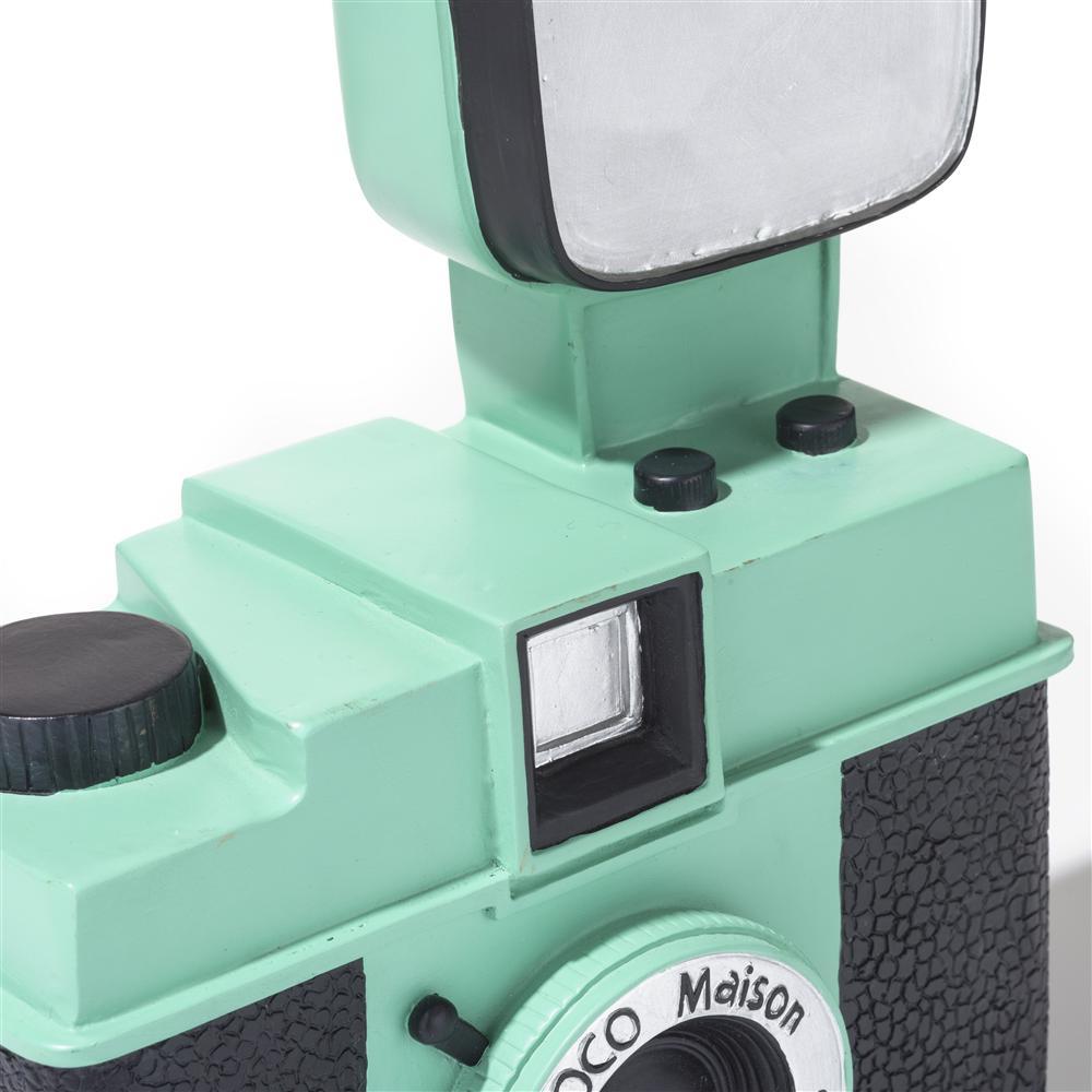 cma MNT camera detail