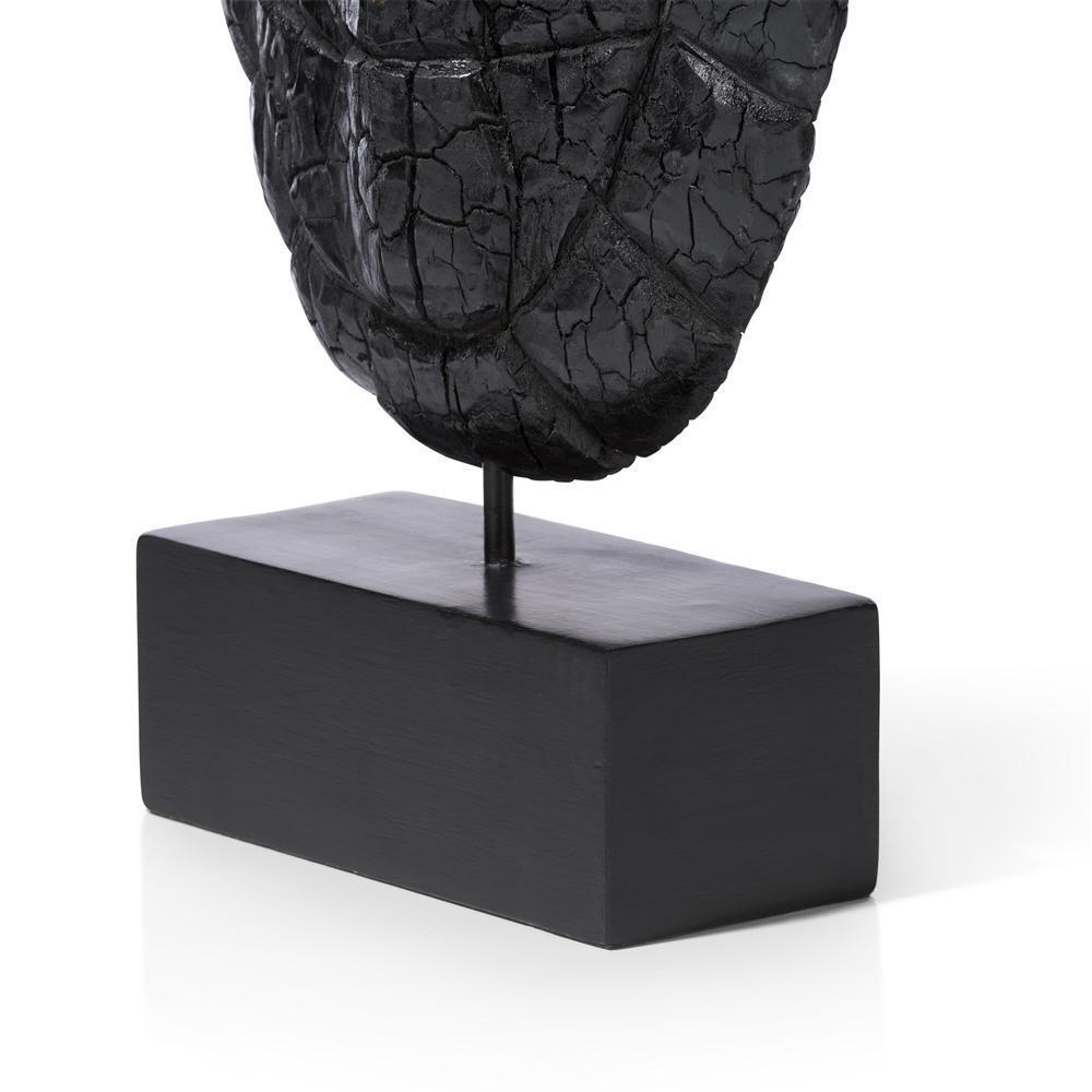 Objet carapace de tortue en bois noir