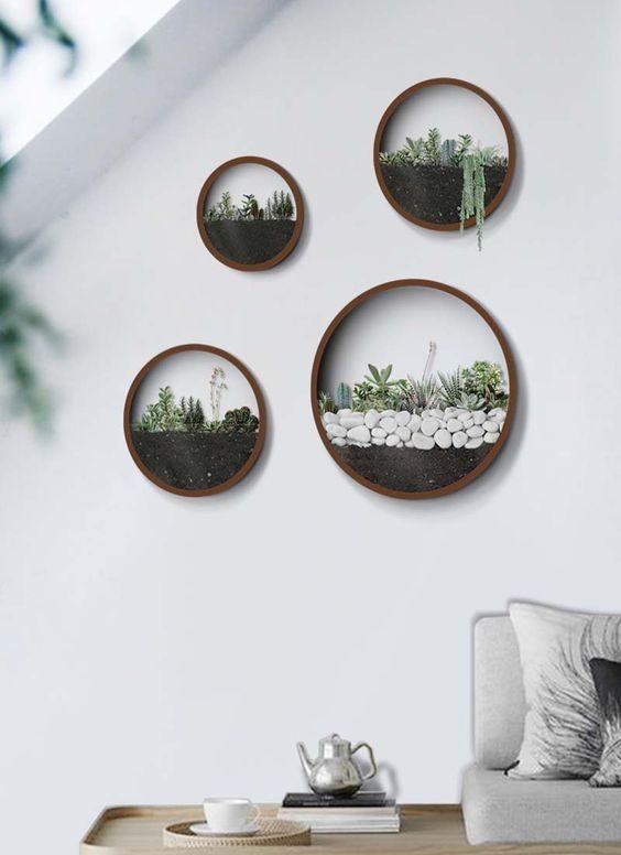 quatre terrariums muraux ronds