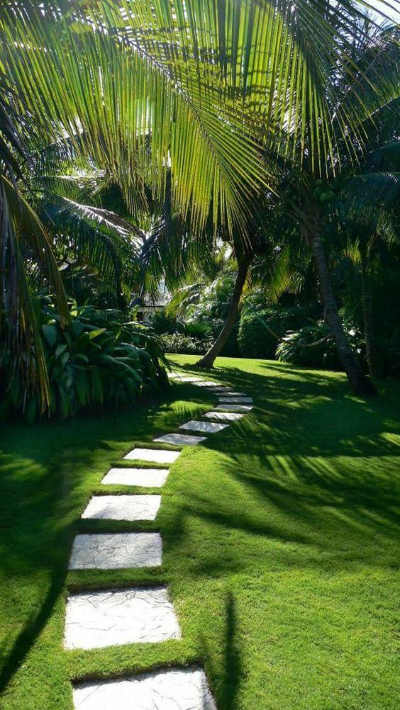 Chemin de dalles jardin tropical