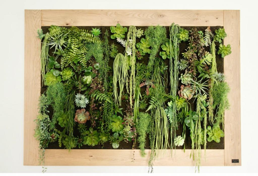 Décorateur d'intérieur La Déco by Séb et Nico cadre végétal plantes grasses